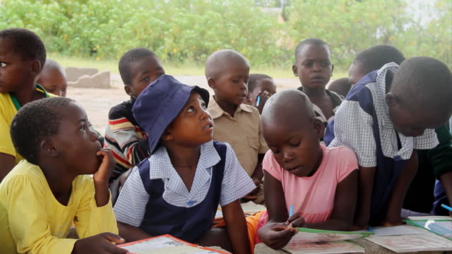 ms group of eager schoolchildren observing teacher / save valley, southern zimbabwe, zimbabwe - elementary school stock videos and b-roll footage