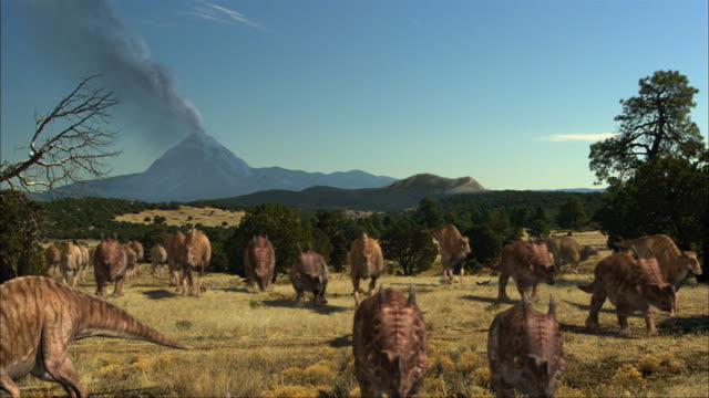 cgi, ws, group of einiosauruses walking in field, volcano in background - einiosaurus stock videos and b-roll footage