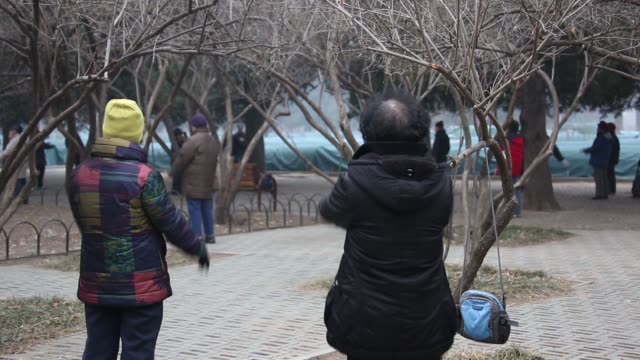 A group of elderly women exercising in Tiantan Park in Beijing China on Sunday March 8 People exercising in the park An elderly man rubs his face in...