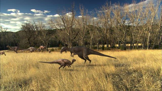 cgi, ms, group of eoraptors grazing in field - eoraptor stock videos and b-roll footage