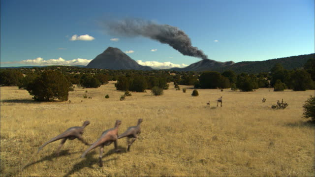 cgi, ws, group of eoraptors running in field, rear view - paleozoology stock videos and b-roll footage