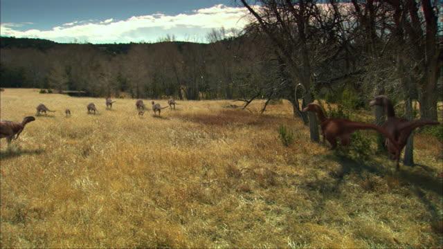 CGI, WS, Group of Eoraptors walking in field, rear view