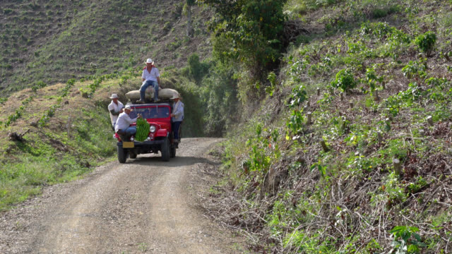 Group of farmers on car with coffee sacks and a branch of plantain