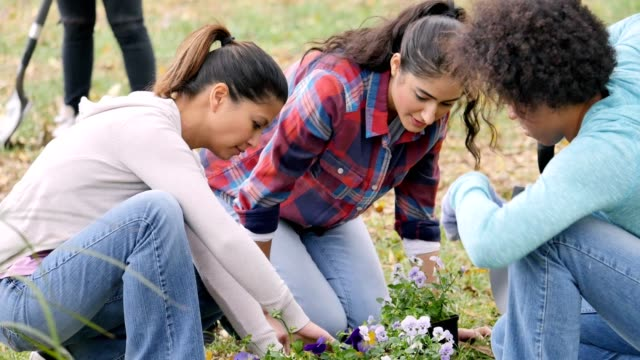 Group of female friends plant flowers in the park during a community beautification event