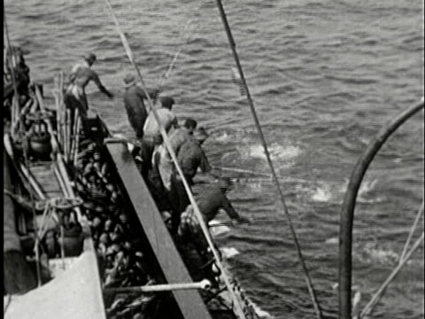 ha, ms, composite, cu, b/w, group of fishermen catching large quantities of fish onto deck, california, usa - anno 1925 video stock e b–roll