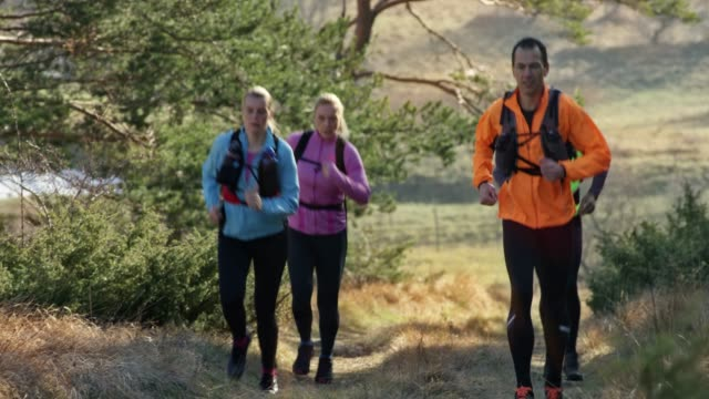 group of four runners running up a grassy mountain trail in sunshine - 40 49 years stock videos & royalty-free footage