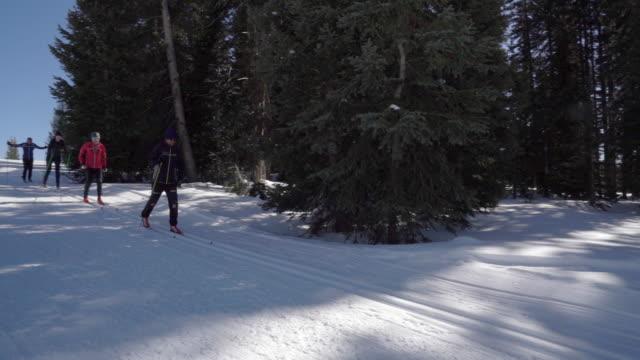 vídeos de stock e filmes b-roll de a group of four skiers in a classic cross country skiing style - bastão de esqui
