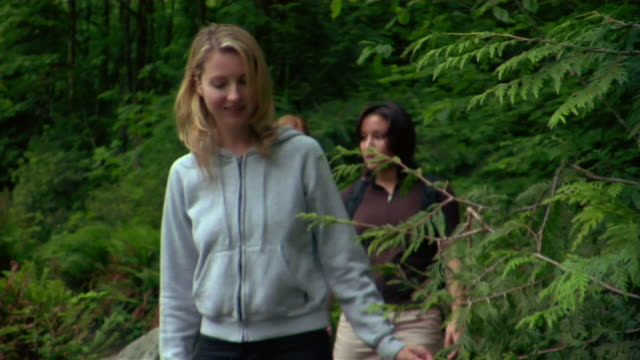 vidéos et rushes de group of friends brushing past leaves along forest trail during hike - kelly mason videos