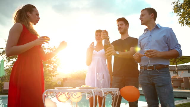 Group of friends drinking wine in social meeting
