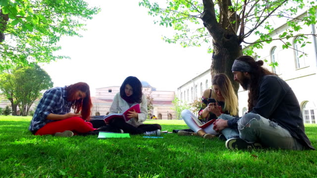 group of friends enjoying a meeting at the campus - maschio con gruppo di femmine video stock e b–roll