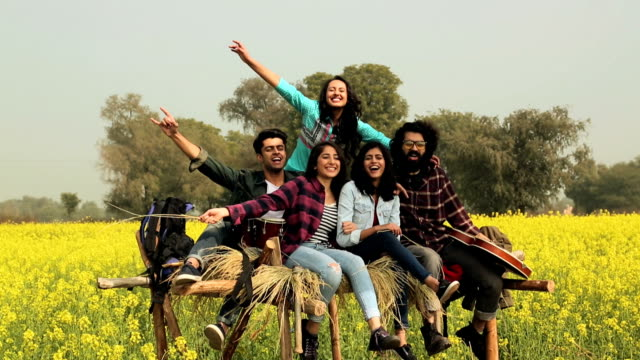 group of friends enjoying in the farm, punjab, india - 20 29 years stock videos & royalty-free footage