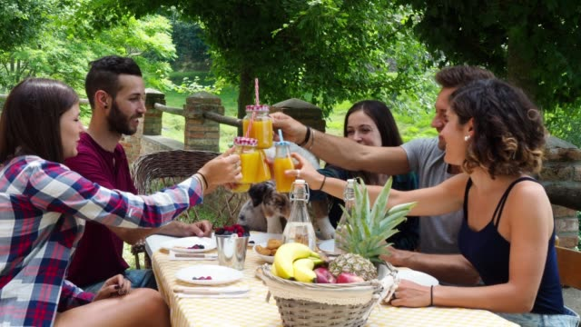 group of friends having a break in the countryside together drinking juices - brunch stock videos & royalty-free footage