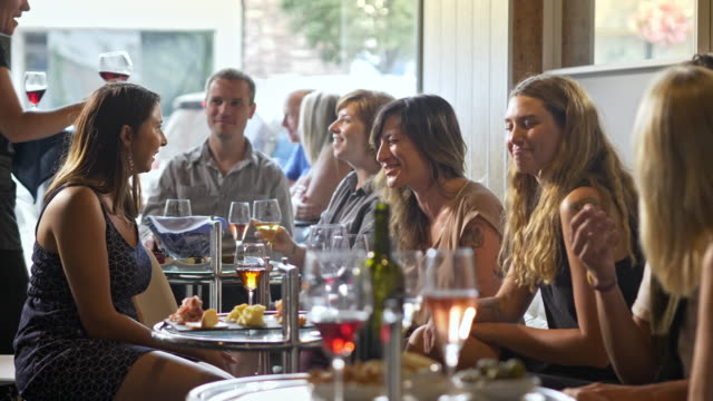 a group of friends having fun in a wine bar cafe. - wine bar stock videos & royalty-free footage