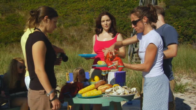 ms, group of friends having picnic on beach, north truro, massachusetts, usa - lobster stock videos and b-roll footage