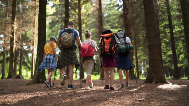 vídeos de stock e filmes b-roll de group of friends hiking and exploring nature - 20 24 anos
