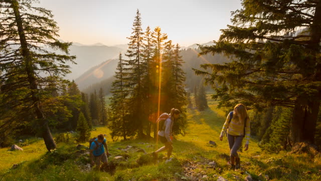 Group of friends hiking through green mountain meadow at sunset