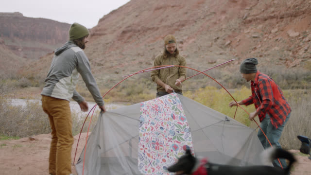 group of friends on camping trip work together to build a tent. - cooler container stock videos and b-roll footage