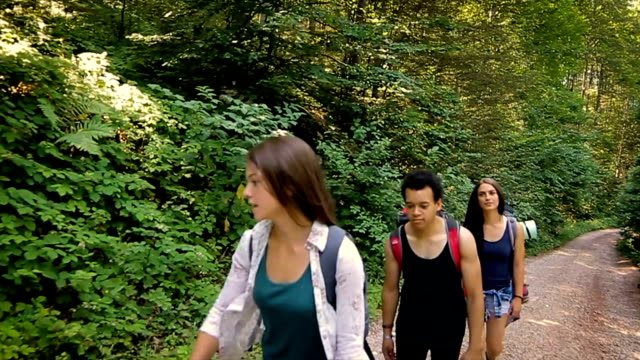 Group of friends on hiking trail,camera stabilizer shot