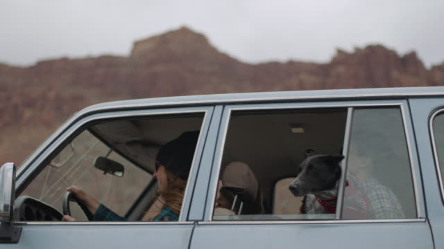 slo mo. group of friends on road trip ride by with dog looking out of open window. - moab utah stock-videos und b-roll-filmmaterial