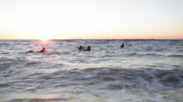 group of friends paddling in ocean on surfboards at sunset - four people stock videos & royalty-free footage