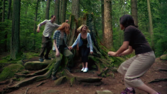 group of friends pausing to take pictures in front of large moss-covered tree trunk during hike - kelly mason videos stock-videos und b-roll-filmmaterial