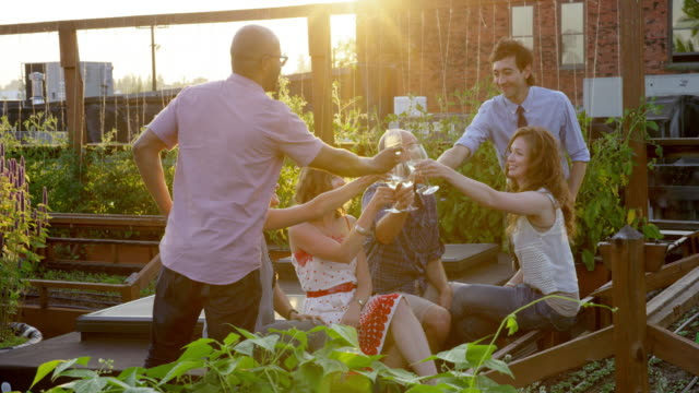 MS Group of friends toasting in rooftop garden at sunset on summer evening