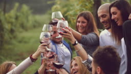 Group of friends toasting with red wine in the vineyard
