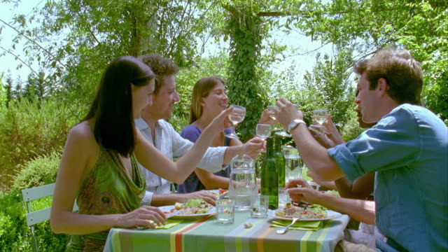 MS, Group of friends toasting with wineglasses at garden table, Saint Ferme, Gironde, France