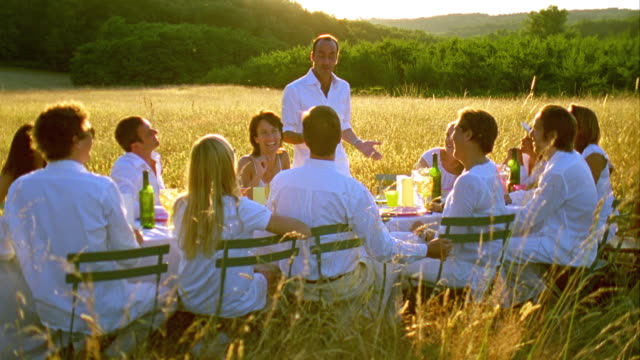 MS, Group of friends toasting with wineglasses in meadow at sunset, Saint Ferme, Gironde, France