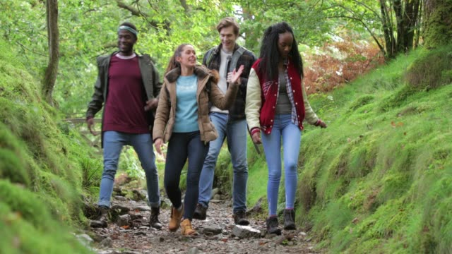group of friends walking downhill - relaxation exercise stock videos & royalty-free footage