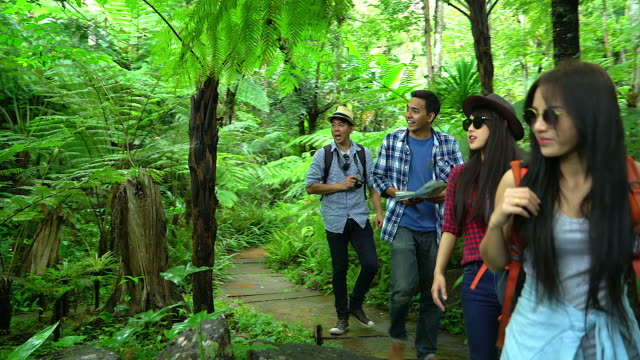 Group of friends, walking in autumn forest, amazed by the beauty of nature, wearing comfortable outfits for hiking, looking far, exploring jungle trails