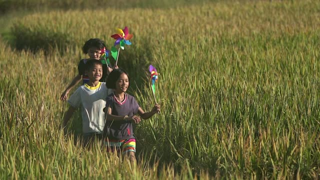group of happy asian children running with pinwheels at the rice field. - sustainable energy stock videos & royalty-free footage
