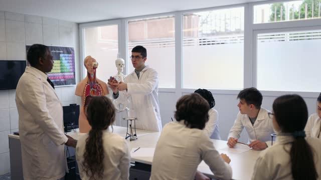 vídeos de stock e filmes b-roll de group of high school students on anatomy class - anatomia
