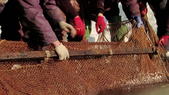 ms zo group of indigenous russians pull up fishing net from ice / nogliki,  sakhalin, russia - effort video stock e b–roll