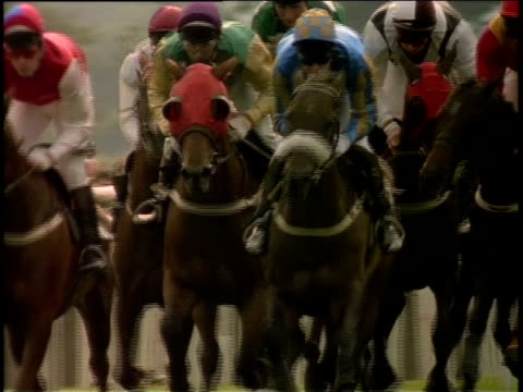 slo mo, ms, cu, group of jockeys riding horses in horse race, ireland - medium group of animals stock videos & royalty-free footage