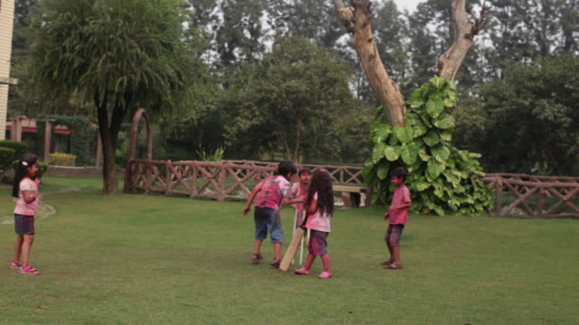 group of kids playing cricket in holi festival  - cricket stump stock videos & royalty-free footage