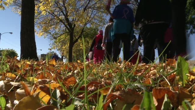 group of letter carriers were walking for breast cancer research. hundreds of walkers came from all across illinois for a 5k. letter carriers walk... - postal worker stock videos & royalty-free footage