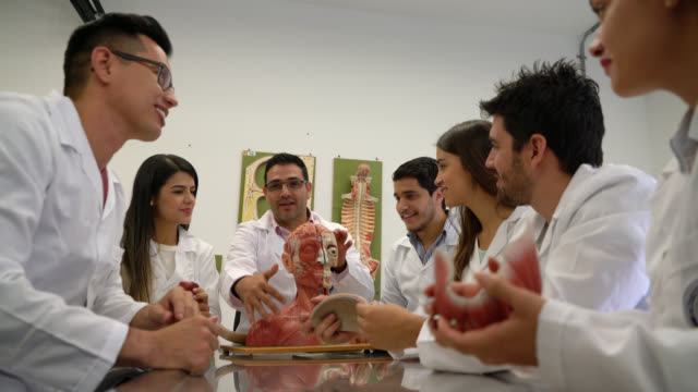 group of med students at an anatomy class with a teacher - explaining stock videos and b-roll footage