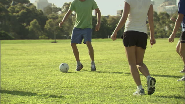 ms, cu, pan, group of men and women playing soccer in park, sydney, australia - hobby stock-videos und b-roll-filmmaterial