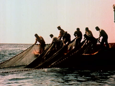 1960 montage group of men hauling large fishing net into boat / usa - trawler stock videos & royalty-free footage