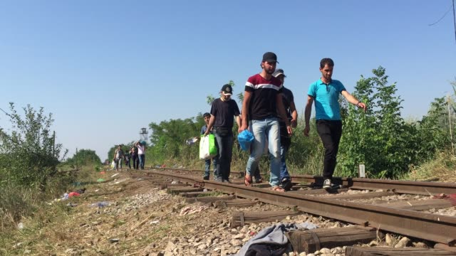 A group of migrants cross the border from Serbia into Hungary close to the village of Roszke on August 30 2015 near Szeged Hungary According to the...