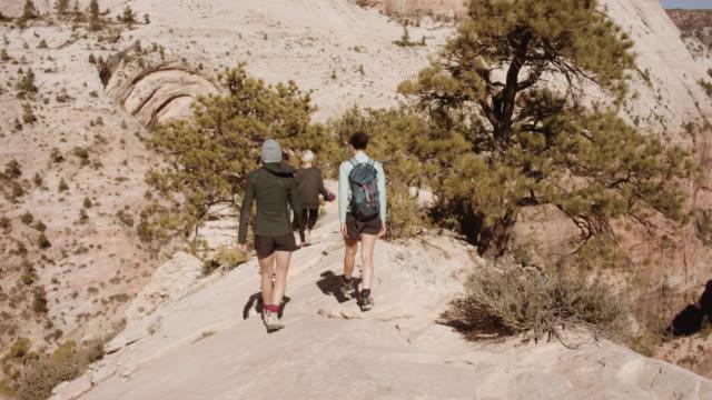 4K UHD: Group of Millennials Hiking