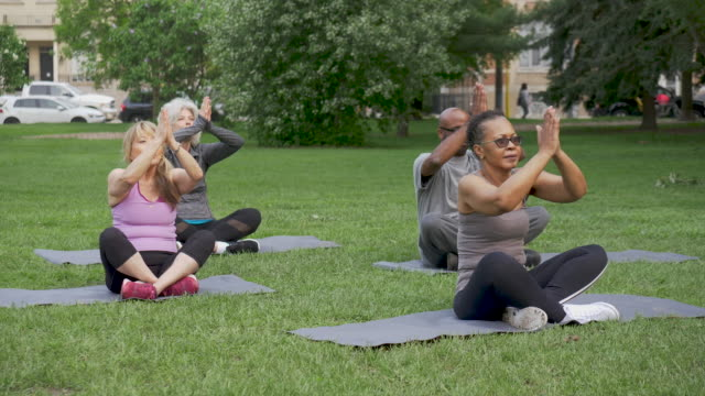 group of mixed ethnic seniors exercising - fatcamera stock videos and b-roll footage