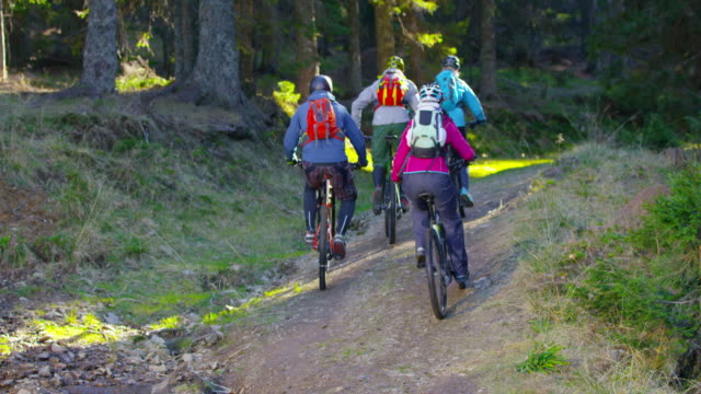 SLO MO Group of mountain bikers going up the forest trail in sunshine