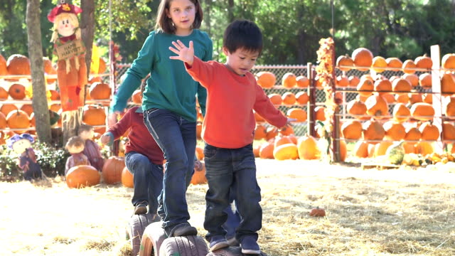 group of multi-ethnic children at fall festival playing - 4 5 years stock videos & royalty-free footage
