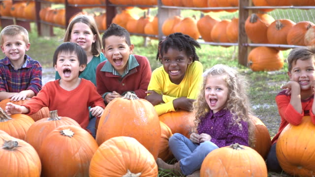 group of multi-ethnic children at sitting with pumpkins - pumpkin stock videos & royalty-free footage