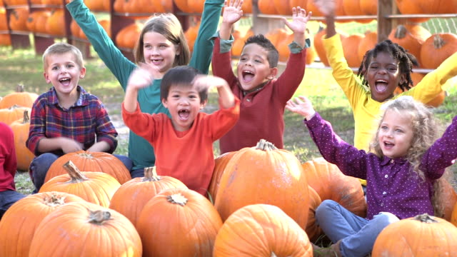 group of multi-ethnic children at sitting with pumpkins - 4 5 years stock videos & royalty-free footage