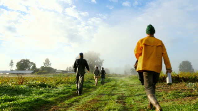 vidéos et rushes de ms group of organic farmers on road after harvest on fall morning - agriculteur