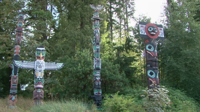 ws pan group of painted totem poles with trees in stanley park / vancouver, british columbia, canada  - animal representation stock videos & royalty-free footage