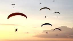 Group of paramotor fly in sunset
